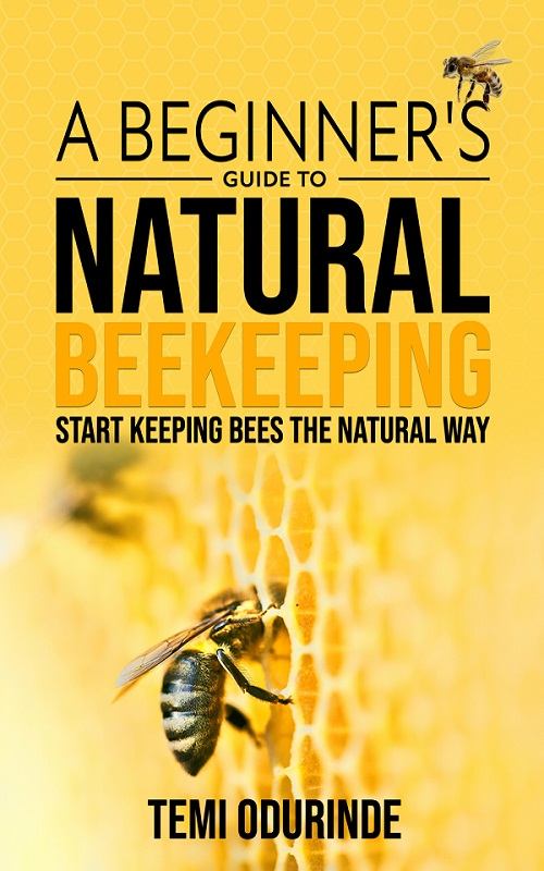 A beginner's guide to natural beekeeping